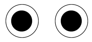 Kameras mit zwei Objektiven